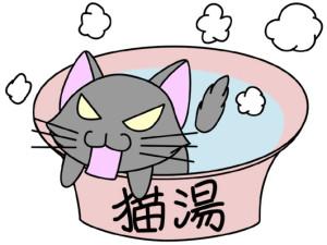 猫のおふろ